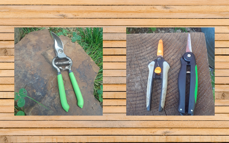 """10 """"MUST HAVE"""" GARDENING TOOLS. A list of the most basic gardening tools you may need."""